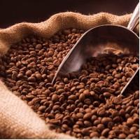 Podnikatelský záměr kavárna a jeho obsah